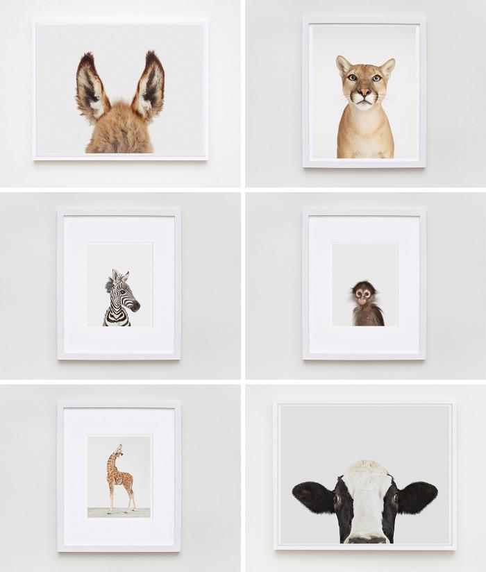 The-Animal-Print-Shop_selection